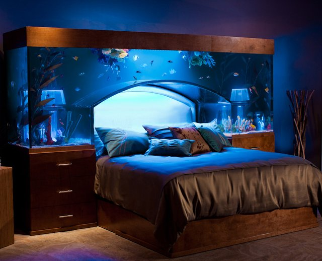 Fancy - Aquarium Bed by Acrylic Tank Manufacturers