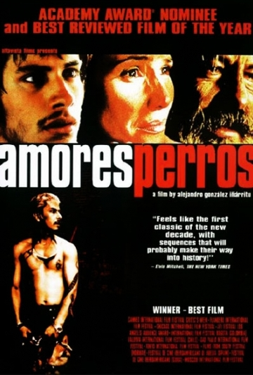 Amores Perros - Television Tropes & Idioms