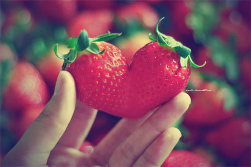 Google 画像検索結果: http://blog-imgs-38.fc2.com/c/u/r/curaracura/strawberry-heart.jpg