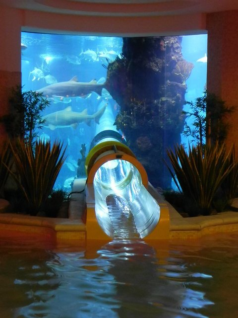 Aquarium Slide @ Golden Nugget, Las Vegas » Design You Trust – Design and Beyond!