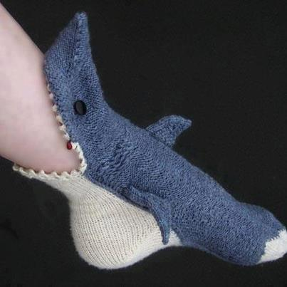 Upward Facing Shark