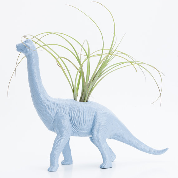 Dinosaur Planter with Air Plant Room Decor College by boygirltees