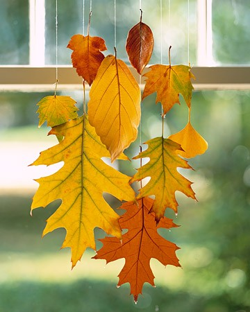 products / Leaves dipped in wax to preserve color - love this!