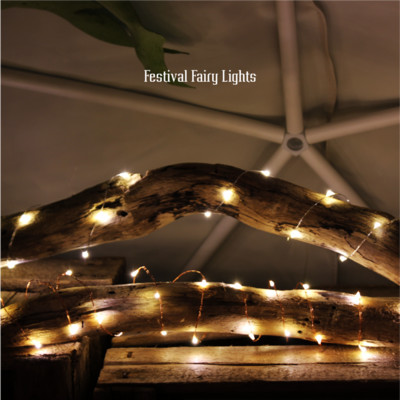 fastival fairy lights 100S