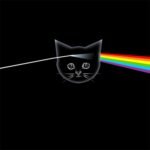 Kitten Floyd - The Dark Side of the Meow - The Kitten Covers
