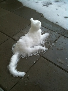 all things kitty / Snow Cat