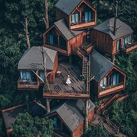 Hangzhou China - Treehouse