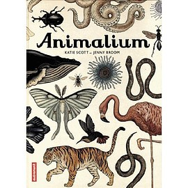Katie scott - Animalium (Welcome To The Museum) - Jenny Broom and Katie Scott - Scout & Co