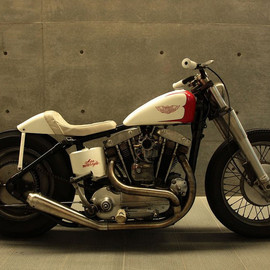 Harley-Davidson - Iron Sports