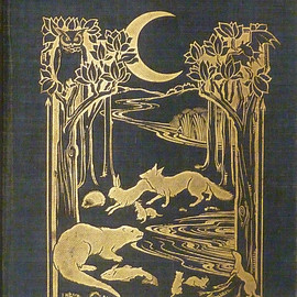 Rees, Alfred Wellesley - Creatures of the Night; a book of wild life in western Britain.