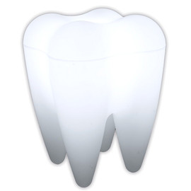 Tooth Ceramic Toothbrush Holder