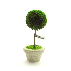 DULTON - BOX WOOD TOPIARY  「BALL」 M