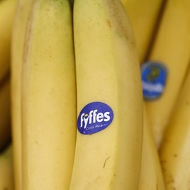 BBC - Fyffes and Chiquita bananas