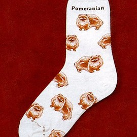 Critter Socks - Pomeranian Socks from Critter Socks