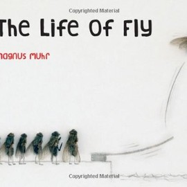 Magnus Muhr - Life of Fly