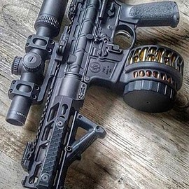 ArmaLite - AR-15 Assault Rifle