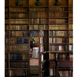 sunsurfer:Secret Bookcase Room, Irelandphoto via cicobookswhen i get my own house, soooo making one of these!