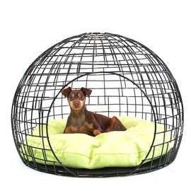 gopetdesign - the Coop Pet Home