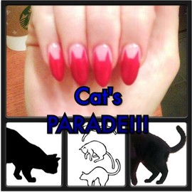 NAIL - Cat'sFRENCH
