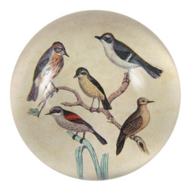 John Derian - Feathered Friends - Dome Paperweight