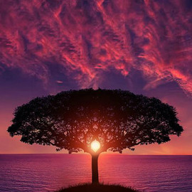 Bess Hamiti - Awesome Sunset !
