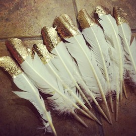Feathers Feathers :)