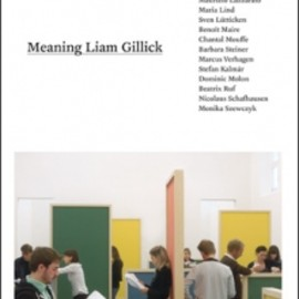 Liam Gillick - Meaning Liam Gillick