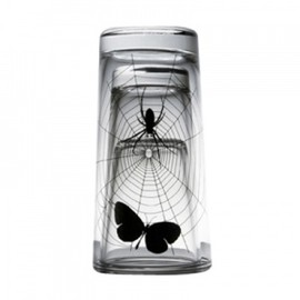 PROPAGANDA - GLASS-SPIDER WEB SET