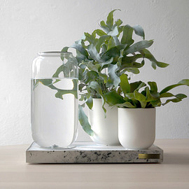 Tableau - Automatic House Plant Watering Tray