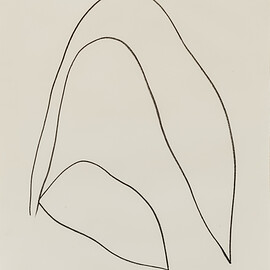 Ellsworth Kelly - Leaves