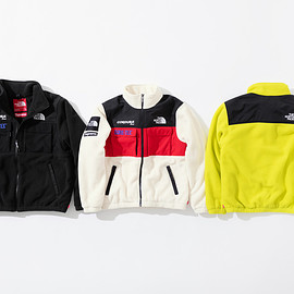 Supreme, THE NORTH FACE - Expedition Fleece Jacket