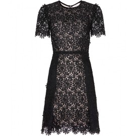 Erdem - Aubrey lace dress