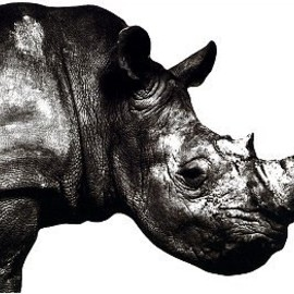 Mr.Children - Mr.Children 1992-1995