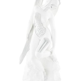 Damien Hirst - Anatomy of an angel (White)