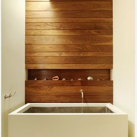 bathroom/wood feature wall