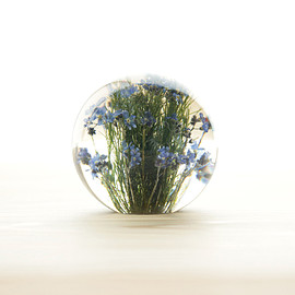 Landscape Products - Hafod Grange - Paperweight S #forget me not