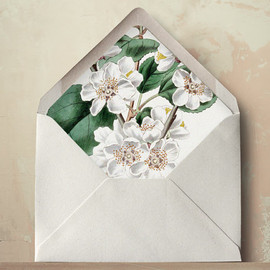 Oakandorchid - Plum Blossom Envelope Liners DIY Printable Wedding Invitations and Cards