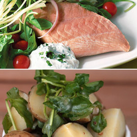 Oprah.com - Poached Salmon with Dill Sour Cream and Potato and Watercress Salad with Mustard Dressing