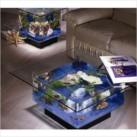 Midwest Tropical  - Aquarium Coffee Table