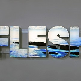 Doug Aitken - 'FLESH' 2012 LED LIT LIGHTBOX