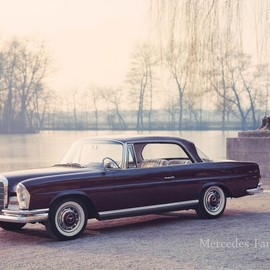Mercedes Benz - W111 250SE COUPE