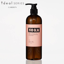ideal - norm