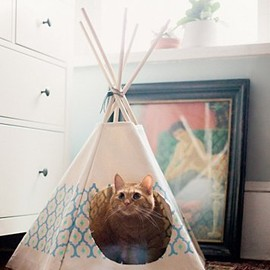 Royal Printed Cat Tipi