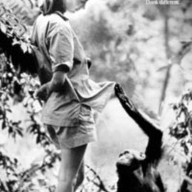 Apple  - Jane Goodall Apple Think Different Poster