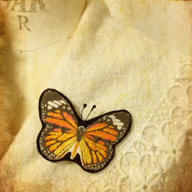 miaulement - butterfly brooch&hair clip