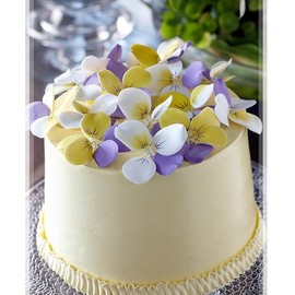Cream Colored Little Cake with Sugar Petals Pansies
