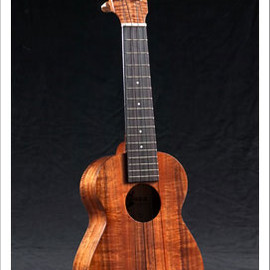 Standard Ukulele Gold Label