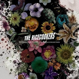 THE RICECOOKERS - NAMInoYUKUSAKI~TV SPECial COLLECTION(DVD付)