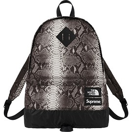 Supreme - Supreme®/The North Face® Snakeskin Lightweight Day Pack