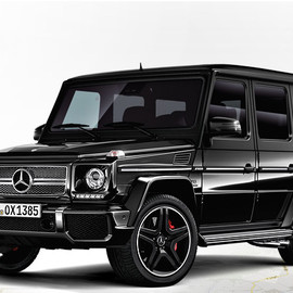 Mercedes-Benz - G65 black×black